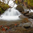 Autumn brook — Stock Photo #6345976