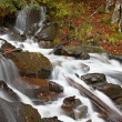Autumn brook — Stockfoto