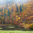 berg rivier in de herfst — Stockfoto