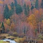 ποτάμι βουνό το φθινόπωρο — Φωτογραφία Αρχείου