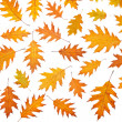 Stock Photo: Assortment of leaves