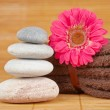Balanced stones — Stock Photo #6346191