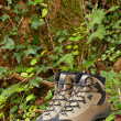 Hiking boots — Stock Photo #6347207
