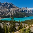 Foto de Stock  : Peyto Lake, Banff National Park, Canada