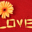 Daisy and the word love — Stock Photo