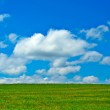 Green field, blue sky and white clouds — Stock Photo