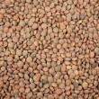 Lentils background — Stock Photo