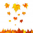 Some maple leaves falling — Stock Photo