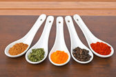 Spices — Foto Stock