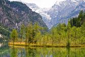 Lago di almsee, valle almtal, austria — Foto Stock