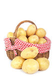 Potatoes in the basket — Stock Photo