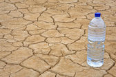 Botella de agua en tierra seca — Foto de Stock