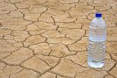 Fles water op droge grond — Stockfoto