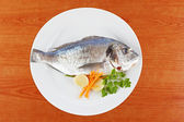 Fresh fish — Stock Photo