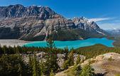 Peyto jezero, národní park banff, kanada — Stock fotografie