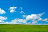 Grönt fält, blå himmel och vita moln — Stockfoto