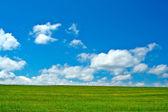 Zielone pola, błękitne niebo i białe chmury — Zdjęcie stockowe
