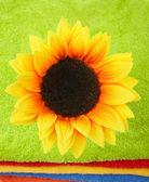 çok renkli havlu üzerine çiçek — Stok fotoğraf