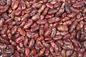 Background of raw beans — Stock Photo