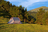 Tent in the green meadow — Stock Photo
