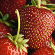 strawberry — Stock Photo #5753746