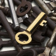 A golden key amid rusty ones — Stock Photo #5754824