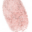 Fingerprint - Stock fotografie