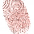 Fingerprint - Foto Stock