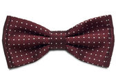 Bow Tie — Stock Photo