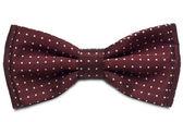 Corbata de moño — Foto de Stock