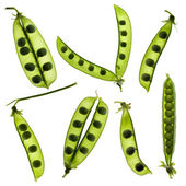 Pea Lot — Stock Photo