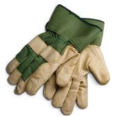 手袋 — ストック写真