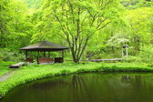Fresh green arbor and pond — Stock Photo