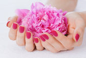 Pink manicure and flower — Stock Photo