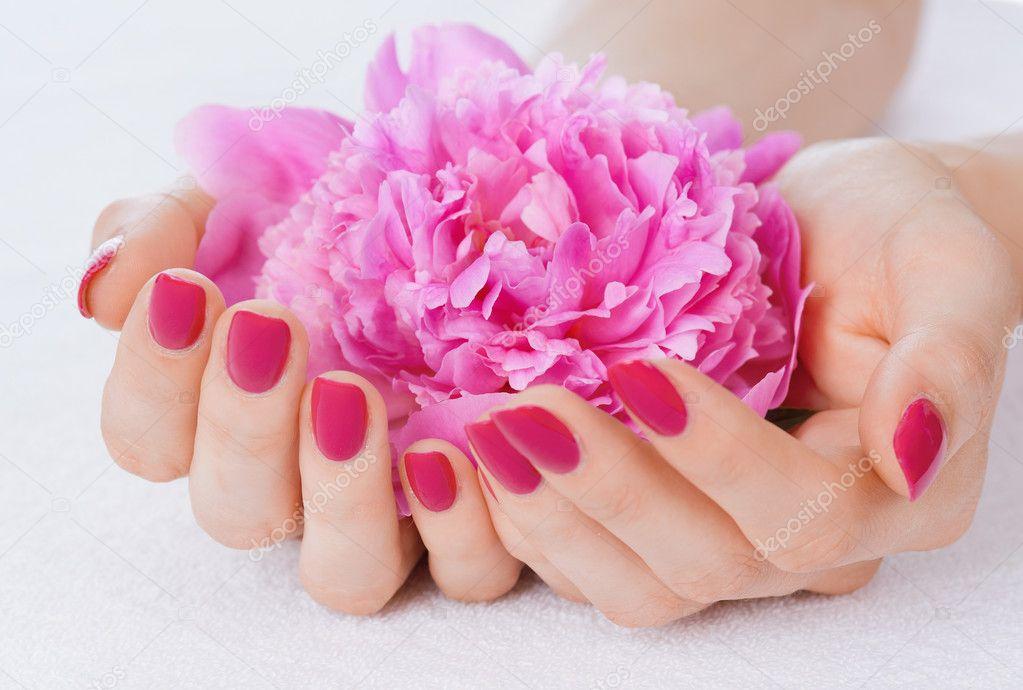 White Rose Salon Spa