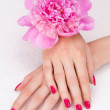 Top view of woman hands with pink manicure and flower — Stock Photo #5829280