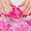 Stock Photo: Manicure procedure with pink flowers