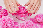 Manicure procedure with pink flowers — Stock Photo