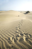 Footsteps at the desert — Stock Photo