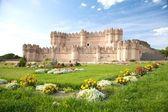 Vista di fiori del castello di coca — Foto Stock