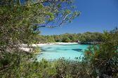 Bella spiaggia solitaria — Foto Stock