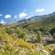 Green valley in gredos avila — Stock Photo