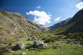 Kar dağlar yeşil vadi — Stok fotoğraf