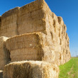 Hay at the country — Foto de Stock