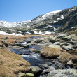 Landscape at gredos mountains — Stok fotoğraf