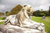 White lion sculpture — Stock Photo