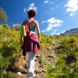 Walking between bracken — Stock Photo