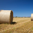 Two straw cylinders — Foto Stock