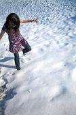 Aşağı salamanca karda yürümek — Stok fotoğraf
