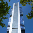 Skyscraper with trees around — Stockfoto #6612116